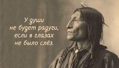 Мудрость индейского народа Уроки жизни от народа, который мог жить в полной гармонии с природой.