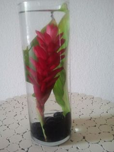 Decorate your home with a vase, some water, black rocks, and a fresh flower