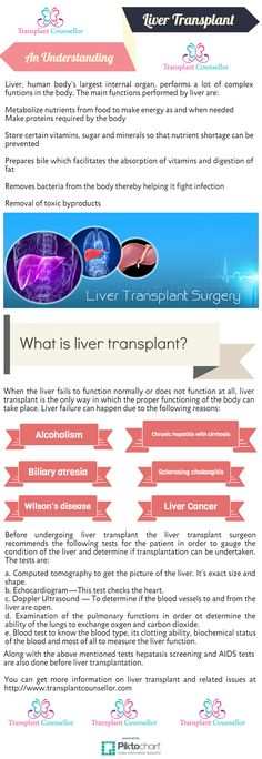 Liver Organ Tissue Can Easily Replenish Very Much Like Muscular