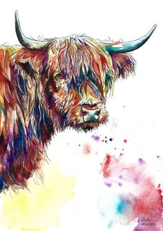 Guy The Highland Cow Limited Edition Painting Watercolour Colour Print Highland Cow Painting, Highland Cow Art, Highland Cattle, Watercolor Animals, Watercolor Paintings, Cow Pictures, Farm Yard, Wildlife Art, Animal Paintings