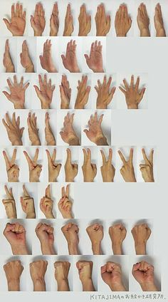 Photo Collection Of Basic Hand Poses.