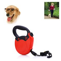 New Arrival 8m Extendable Retractable Dog Training Lead Leash Dog Harness Durable Steady Pet Accessories For Medium Large Dog -  Cheap Product is Available. We give you the discount of finest and low cost which integrated super save shipping for New Arrival 8m Extendable Retractable Dog Training Lead Leash Dog Harness Durable Steady Pet Accessories For Medium Large Dog or any product promotions.  I think you are very happy To be Get New Arrival 8m Extendable Retractable Dog Training Lead…