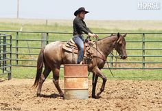 Champion barrel racer Lindsay Sears offers solutions to your toughest problems.