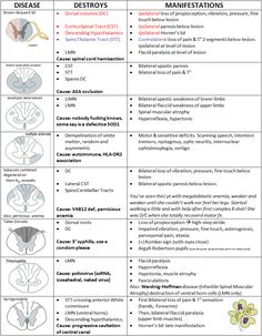 "mynotes4usmle: "" SPINAL CORD LESIONS Hello guys! Please, keep in mind that my charts may have mistakes. I share them with all the best intentions in the world, but PLEASE don't trust them 100%. Always assume that there may be something wrong; and if..."
