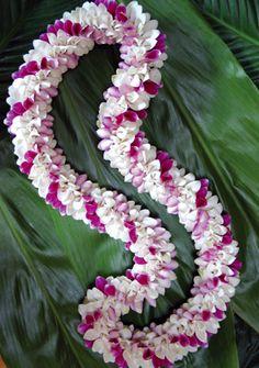 Dendrobium-Orchid-Flower Hand-woven Masrepiece Spiral-Lei Flower Garland Wedding, Rose Garland, Flower Garlands, Wedding Flowers, Tropical Flowers, Colorful Flowers, Hawaiian Crafts, Hawaiian Leis, Flower Company