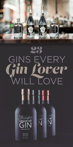 Give thought to everything you is capable of doing utilizing a wonderful container of gin, allow me to share twenty delicious and hassle free gin based cocktails. Gin Drink Recipes, Gin Cocktail Recipes, Cocktail Drinks, Bar Drinks, Alcoholic Drinks, Best Gin And Tonic, Smoothie, Gin Tasting, Gin Gifts