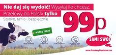 Przelewy do Polski w promocyjnej cenie 99p