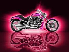 New Motorcycle Girl Pink Harley Davidson Ideas Pink Motorcycle, Motorcycle Logo, Scrambler Motorcycle, Motorcycle Style, New Motorcycles, Harley Davidson Motorcycles, Lady Biker, Biker Girl, Pink Bike