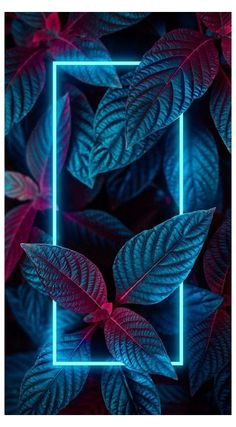 cool wallpapers for phones neon