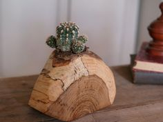 Rustic Cactus Pot  Indoor Plant Holder  by CattailsWoodwork, $35.00