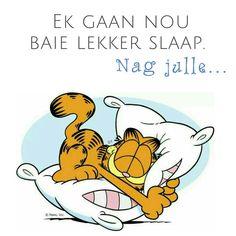 Ek gaan nou baie lekker slaap.  Nag julle .. Goeie Nag, Afrikaans Quotes, Good Night Sweet Dreams, Good Night Quotes, Wisdom Quotes, Messages, D1, Garden, Garten