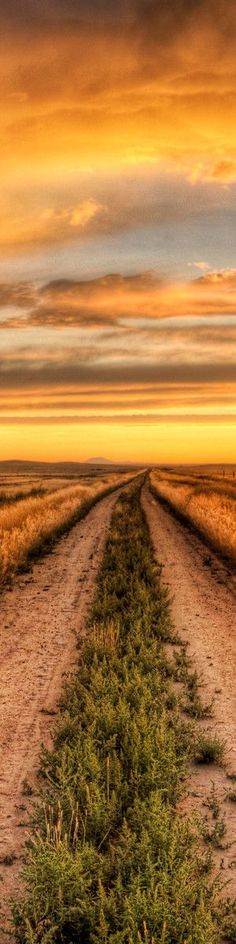 The Road to Tomorrow photographer unknown
