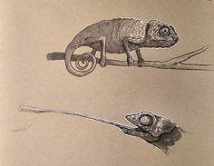 Dynamic Sketching 2 - CGMA 2D Academy | Adam Powers
