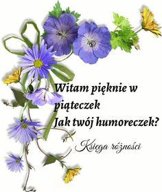 Good Morning, Album, Humor, Polish Sayings, Good Morning Funny, Night, Buen Dia, Bonjour, Humour