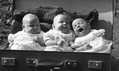 Luggage Babies