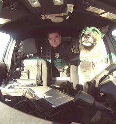 I'm driving today! Rochester Police K-9 Razor at the wheel.