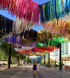 Experience the New Art Installation: The Color Condition at Discovery Green