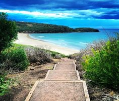 Killalea Beach, Shellharbour, NSW, Australia