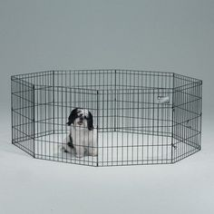 """Exercise Pen without Door in Black Finish Size: 48"""" H (X-Lar"""