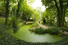 Jardin sauvage St Vincent, #Paris.