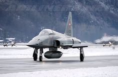 A Swiss Air Force Northrop F-5E Tiger II in Switzerland, January 19, 2015.