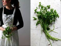 https://arce-hermanas.squarespace.com/recipesblog/2014/12/29/polpette