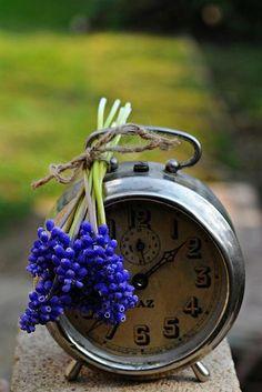 alarm clock. time
