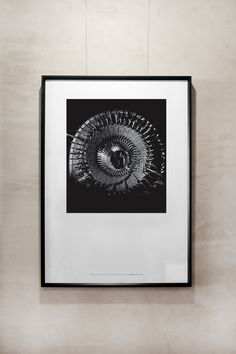 Man Made Poster: Turbo Alternator  £55.00  A2 Poster printed on Hahnemuhle Photo Rag paper. Sold unframed.