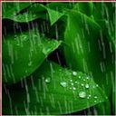 #chuva