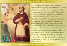 MISIONEROS DE LA PALABRA DIVINA: SANTORAL - SAN RAMÓN NONATO