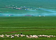 The vast expanse of grassland in Qinghai, China.