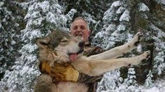 Petition · Save the wolves · Change.org