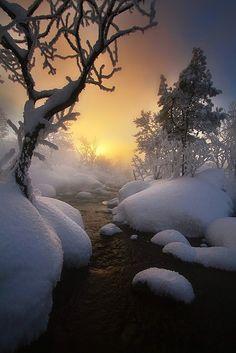 Winter wonderland, sunrise, sunset, creek, snow, trees, amazing, panorama, landscape, cold, photo, Mother Nature.