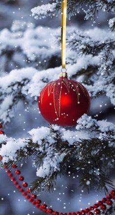 Imagem de christmas, snow, and christmas tree Christmas Scenes, Christmas Tree Themes, Noel Christmas, Merry Little Christmas, Christmas Pictures, Winter Christmas, Christmas Bulbs, All Things Christmas, Xmas