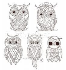 cute owls - Google Search