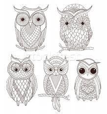 cute owls - Google Search
