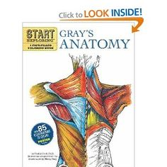 Start Exploring Grays Anatomy A Fact Filled Coloring Book Books Freddy Stark