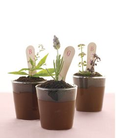 EDIBLE FLOWER POTS! Chocolate pudding, crushed cookies for the dirt, and edible flowers sprouting from the top! How adorable are these?
