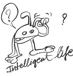 well... not so intelligent, it seems..