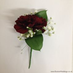 Burgundy Spray Carnation and Gypsophila Grooms Buttonhole Wedding Flowers Liverpool, Merseyside, Bridal Florist, Booker Flowers and Gifts, Booker Weddings