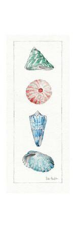Sea Finds III Art Print by Lisa Audit at Art.com