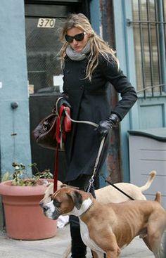 Gisele Bundchen walking her Boxer.