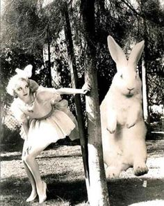 hoppy easter