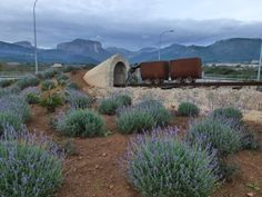 Rotonda del minero (Lloseta, Baleares)