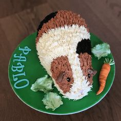 Funny Birthday Cakes, Funny Cake, Birthday Fun, Realistic Cakes, Cute Guinea Pigs, Animal Cakes, Hamster, Pig Party, Teacup Pigs