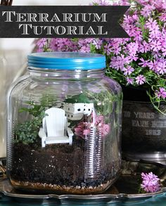 Sweet outdoor themed jar terrarium - House of Hawthornes