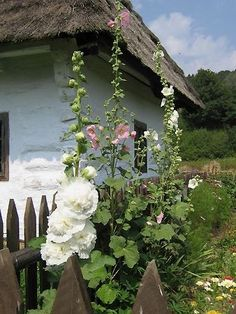Church Pictures, Witch House, Hollyhock, English Style, Perfect World, Garden Gates, Country Life, Cottage Style, Nature