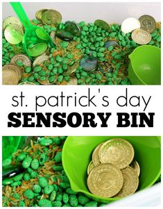 St. Patrick's Day Sensory Bin! Easy and simple way to incorporate the holiday into the classroom!
