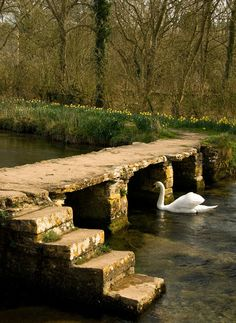 Clapper Bridge, Eastleach, England, United Kingdom