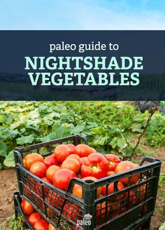 Learn about the different nightshade plants and vegetables, and see if you should avoid them or not.